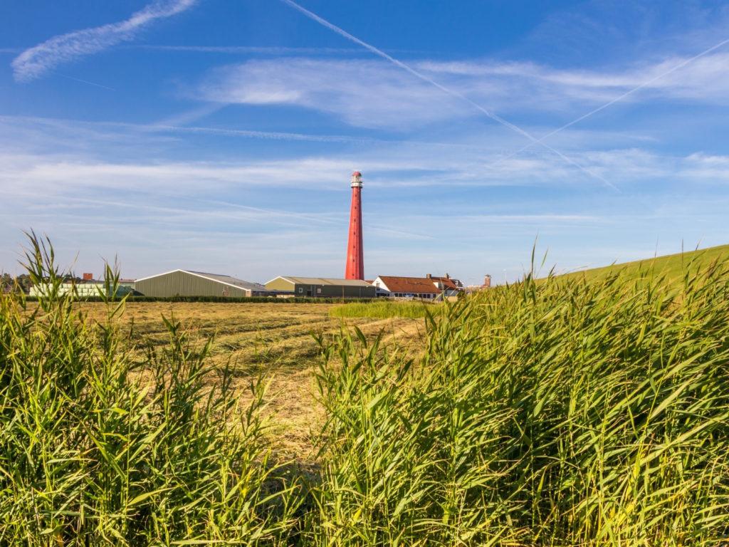 B&B De Zwarte Ruiter - surroundings